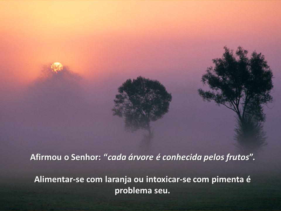 Conheça mais obras psicografadas por Francisco Cândido Xavier e publicadas pela Editora da Federação Espírita Brasileira Visite a página www.febnet.org.br