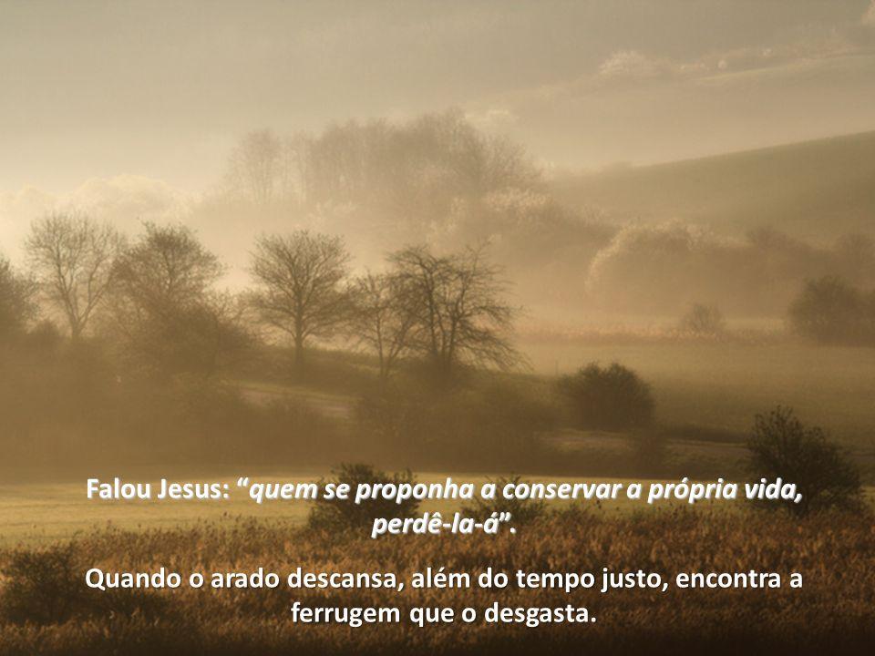 Falou Jesus: quemquem se proponha a conservar a própria vida, perdê-la-á.
