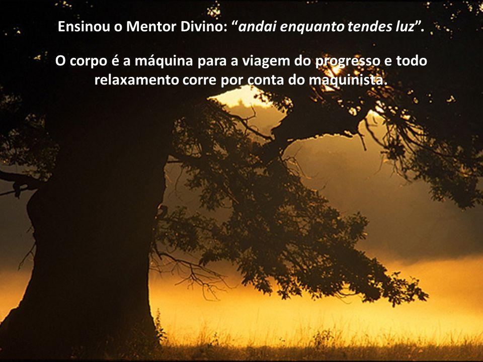 Ensinou o Mentor Divino: andaiandai enquanto tendes luz.