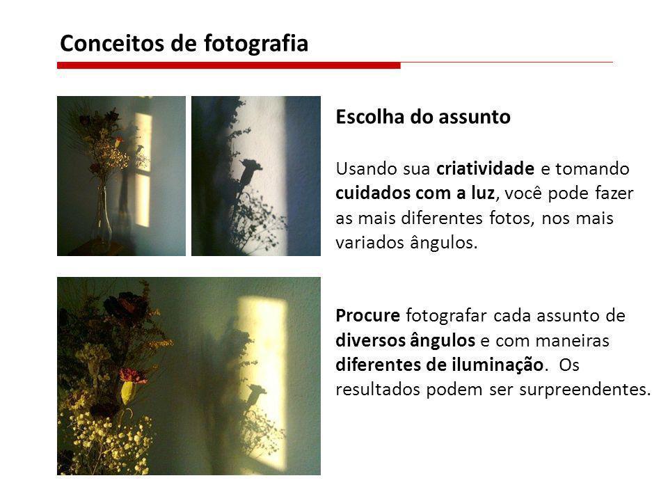 Conceitos de fotografia Escolha do assunto Usando sua criatividade e tomando cuidados com a luz, você pode fazer as mais diferentes fotos, nos mais va