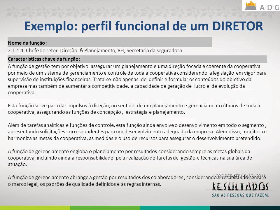 Exemplo: perfil funcional de um DIRETOR 24 Nome da função : 2.1.1.1 Chefe do setor Direção & Planejamento, RH, Secretaria da seguradora Característica