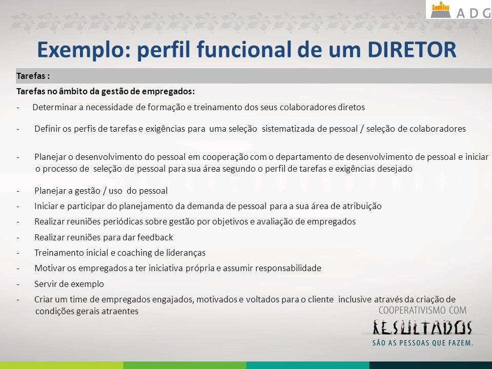 Exemplo: perfil funcional de um DIRETOR Tarefas : Tarefas no âmbito da gestão de empregados: - Determinar a necessidade de formação e treinamento dos