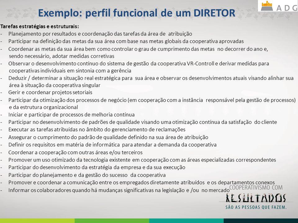 Exemplo: perfil funcional de um DIRETOR Tarefas estratégias e estruturais: - Planejamento por resultados e coordenação das tarefas da área de atribuiç
