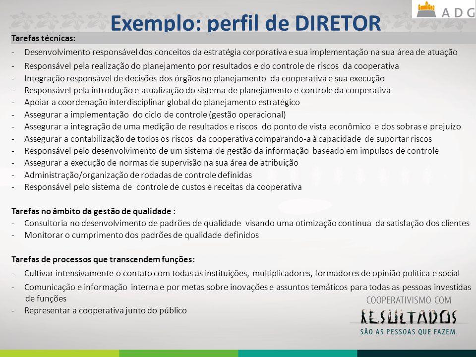 Exemplo: perfil de DIRETOR 27 Tarefas técnicas: - Desenvolvimento responsável dos conceitos da estratégia corporativa e sua implementação na sua área