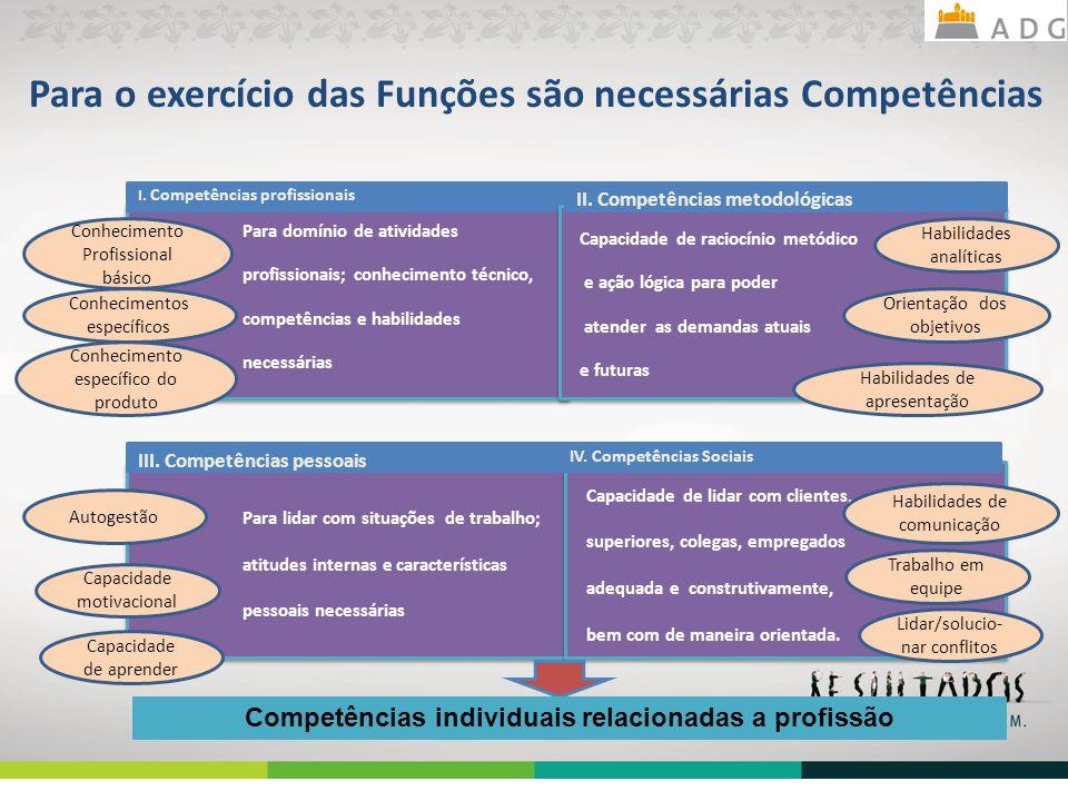 Para o exercício das Funções são necessárias Competências Para domínio de atividades profissionais; conhecimento técnico, competências e habilidades n