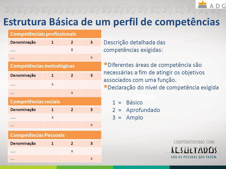 Estrutura Básica de um perfil de competências Competênciais profissionais Denominação123 …..X ….x Descrição detalhada das competências exigidas: Difer