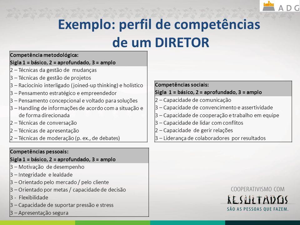 Exemplo: perfil de competências de um DIRETOR Competência metodológica: Sigla 1 = básico, 2 = aprofundado, 3 = amplo 2 – Técnicas da gestão de mudanças 3 – Técnicas de gestão de projetos 3 – Raciocínio interligado (joined-up thinking) e holístico 3 – Pensamento estratégico e empreendedor 3 – Pensamento concepcional e voltado para soluções 3 – Handling de informações de acordo com a situação e de forma direcionada 2 – Técnicas de conversação 2 – Técnicas de apresentação 2 – Técnicas de moderação (p.