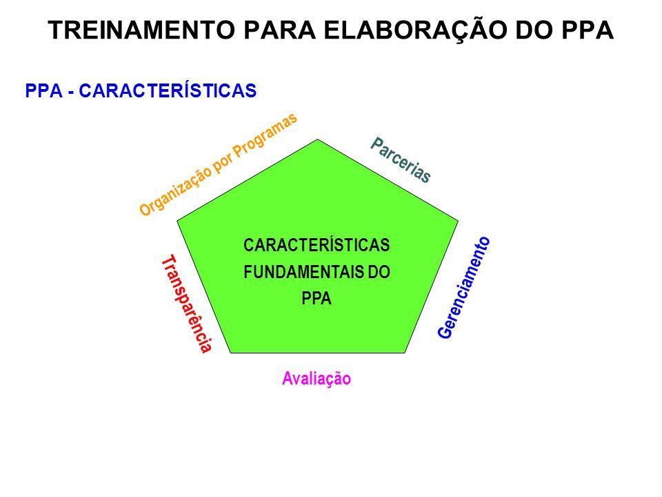 PPA - CARACTERÍSTICAS Organização por Programas Transparência Parcerias Gerenciamento Avaliação CARACTERÍSTICAS FUNDAMENTAIS DO PPA