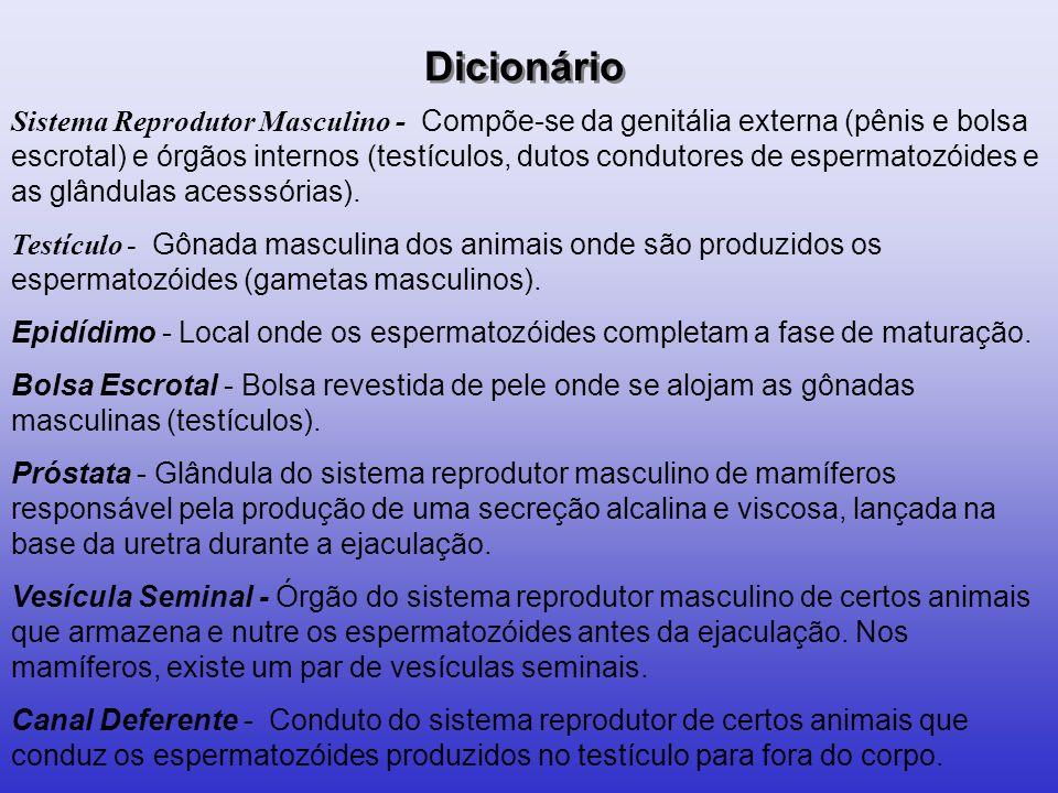 CLASSIFICAÇÃO GÊMEOS FRATERNOS - DIZIGÓTICOS - BIOVULARES - BIVITELINOS FECUNDAÇÃO DE DOIS ÓVULOS POR DOIS SPTZ SEMPRE DICORIÔNICOS DIAMNIÓTICOS GÊMEOS VERDADEIROS - MONOZIGÓTICOS – UNIVITELINOS FECUNDAÇÃO DE UM ÓVULO POR UM SPTZ.