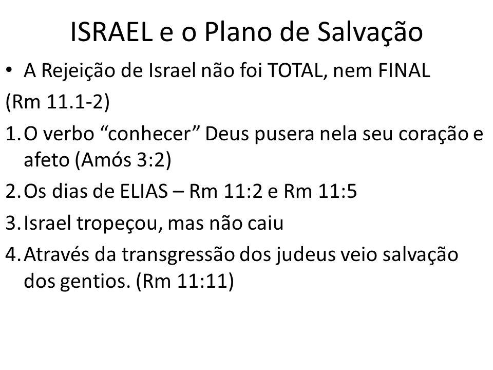 ISRAEL e o Plano de Salvação A Rejeição de Israel não foi TOTAL, nem FINAL (Rm 11.1-2) 1.O verbo conhecer Deus pusera nela seu coração e afeto (Amós 3