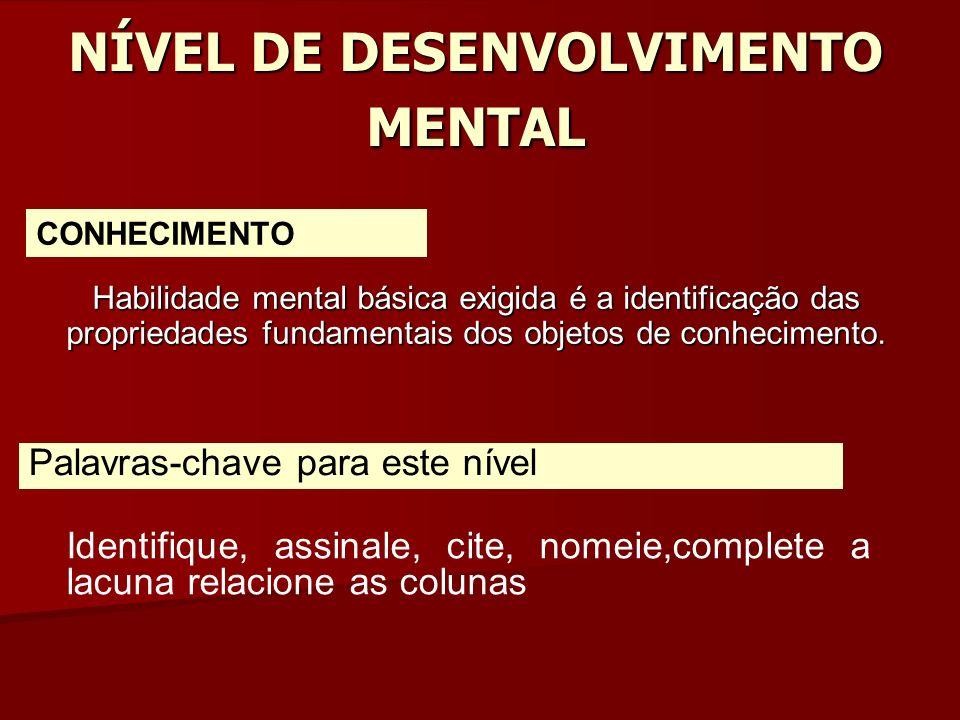 NÍVEL DE DESENVOLVIMENTO MENTAL Habilidade mental básica exigida é a identificação das propriedades fundamentais dos objetos de conhecimento.
