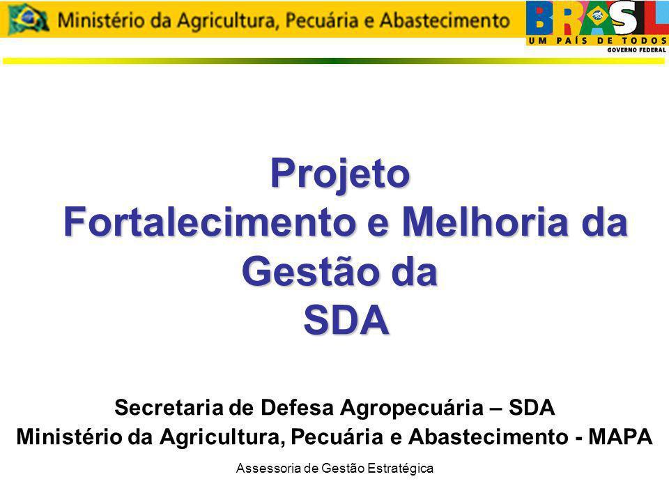 Assessoria de Gestão Estratégica Objetivos Prover uma visão geral do projeto Apresentar o andamento das fases: estratégico, tático e operacional; Apresentar o Plano de Trabalho da fase estratégica: Construção do Processo de Gestão Estratégica da SDA.