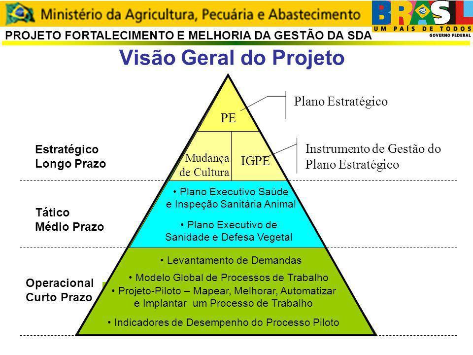 Assessoria de Gestão Estratégica PROJETO FORTALECIMENTO E MELHORIA DA GESTÃO DA SDA Estratégico Longo Prazo Tático Médio Prazo Operacional Curto Prazo Plano Executivo de Sanidade e Defesa Vegetal Levantamento de Demandas Modelo Global de Processos de Trabalho Projeto-Piloto – Mapear, Melhorar, Automatizar e Implantar um Processo de Trabalho Indicadores de Desempenho do Processo Piloto PE Mudança de Cultura IGPE Plano Executivo Saúde e Inspeção Sanitária Animal Plano Estratégico Instrumento de Gestão do Plano Estratégico Visão Geral do Projeto