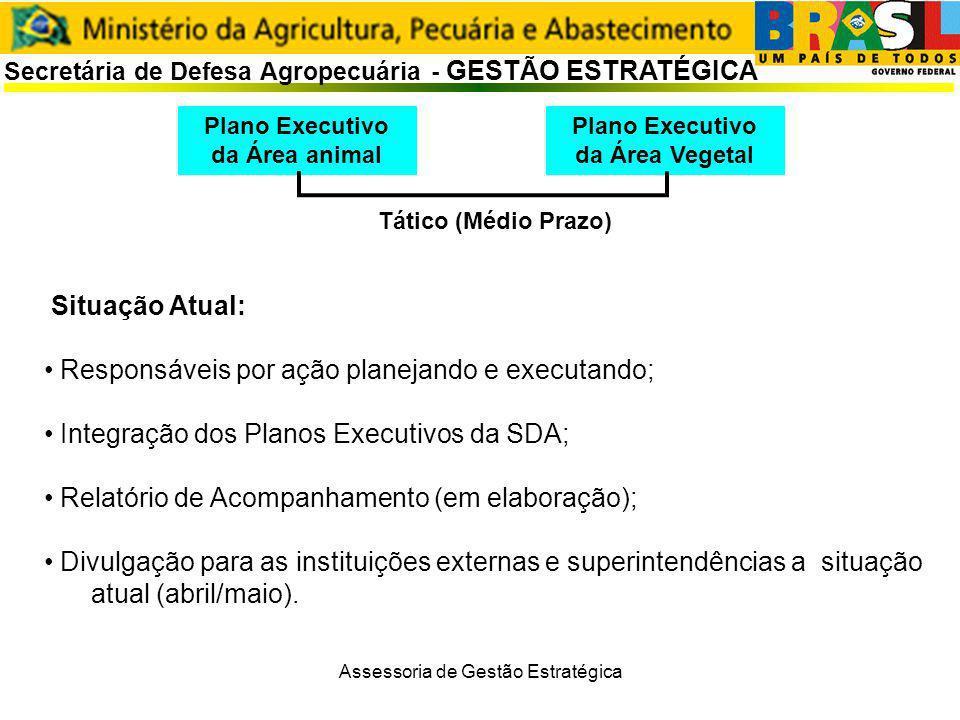 Assessoria de Gestão Estratégica Secretária de Defesa Agropecuária - GESTÃO ESTRATÉGICA Plano Executivo da Área Vegetal Plano Executivo da Área animal Situação Atual: Responsáveis por ação planejando e executando; Integração dos Planos Executivos da SDA; Relatório de Acompanhamento (em elaboração); Divulgação para as instituições externas e superintendências a situação atual (abril/maio).