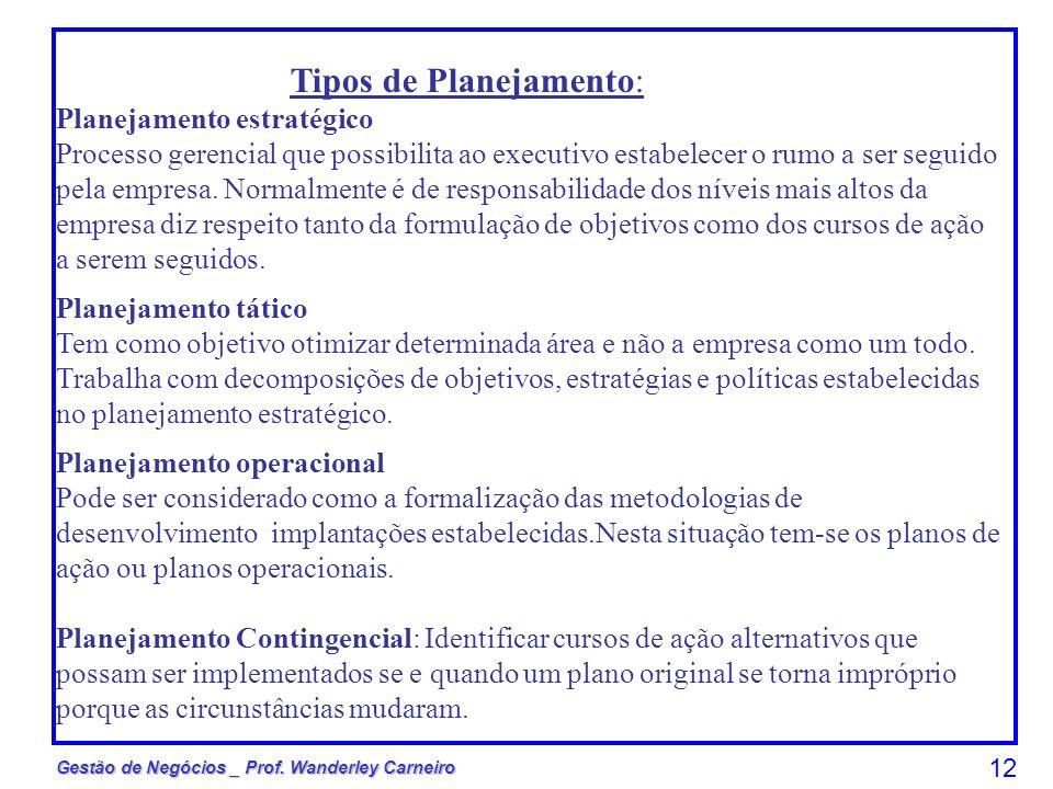 Gestão de Negócios _ Prof. Wanderley Carneiro 12 Tipos de Planejamento: Planejamento estratégico Processo gerencial que possibilita ao executivo estab