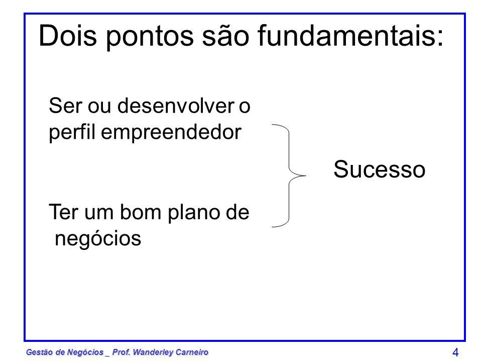 Gestão de Negócios _ Prof. Wanderley Carneiro 4 Dois pontos são fundamentais: Ser ou desenvolver o perfil empreendedor Ter um bom plano de negócios Su