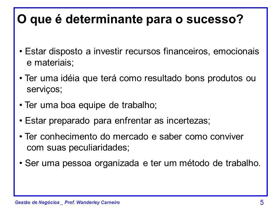 Gestão de Negócios _ Prof. Wanderley Carneiro 5 O que é determinante para o sucesso? Estar disposto a investir recursos financeiros, emocionais e mate