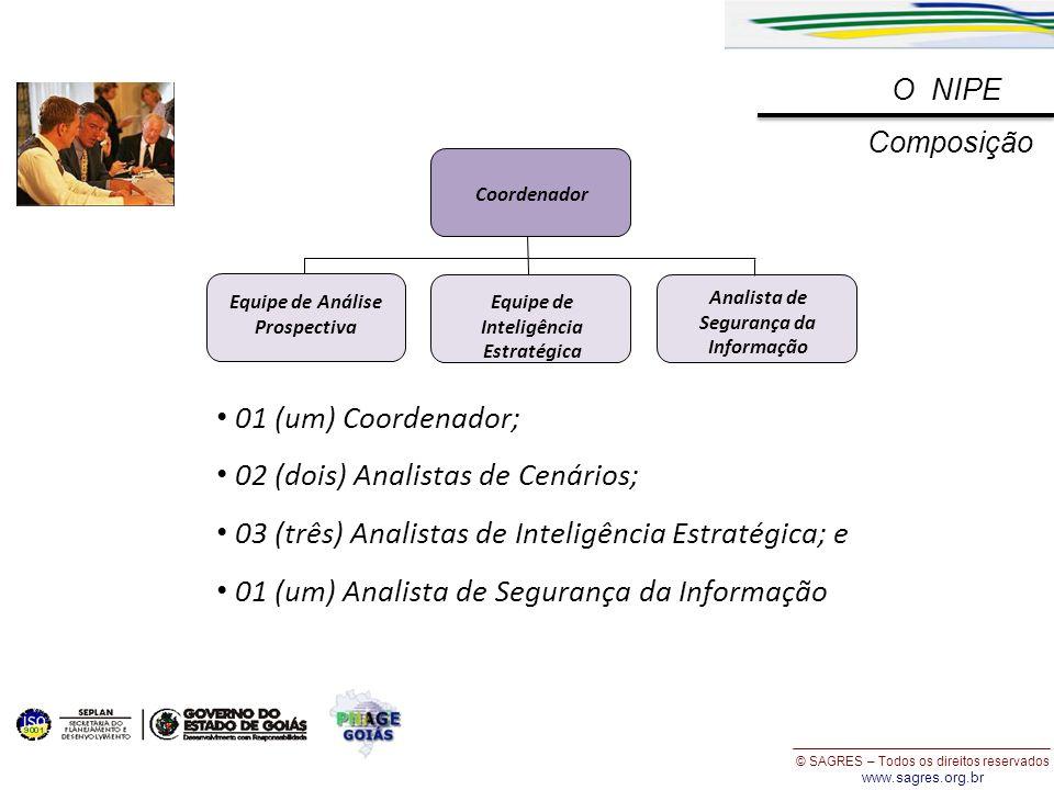 © SAGRES – Todos os direitos reservados www.sagres.org.br O NIPE Composição Equipe de Inteligência Estratégica Analista de Segurança da Informação Coo