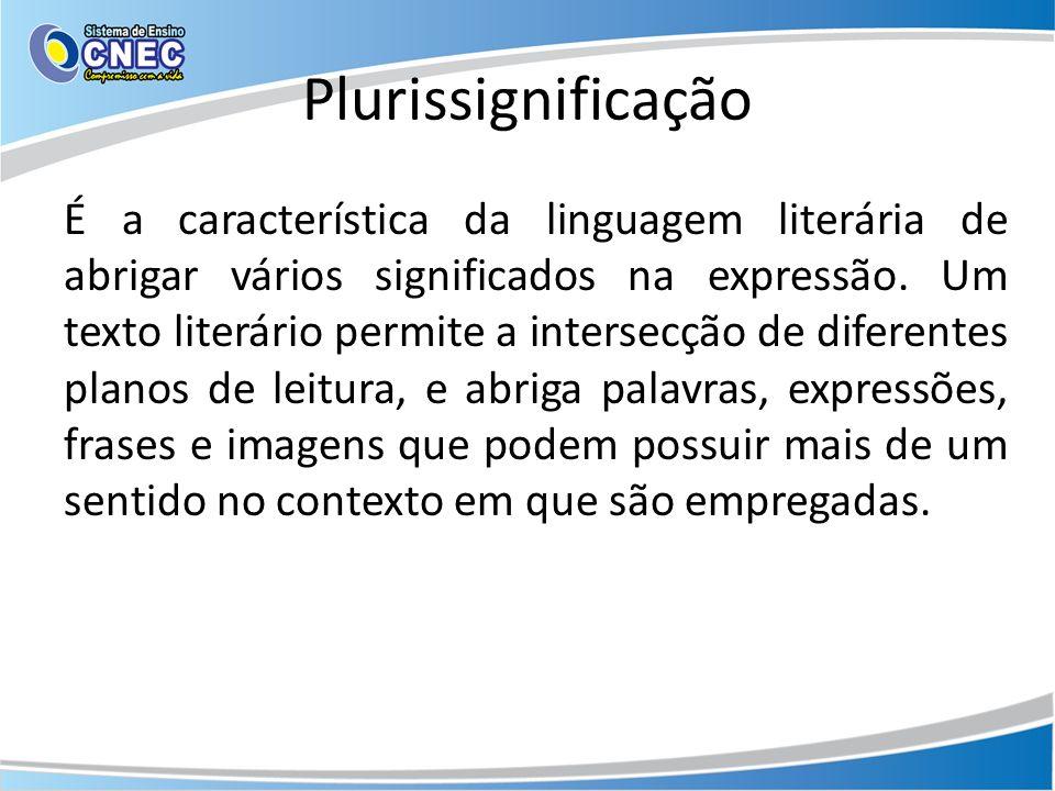 Plurissignificação É a característica da linguagem literária de abrigar vários significados na expressão. Um texto literário permite a intersecção de