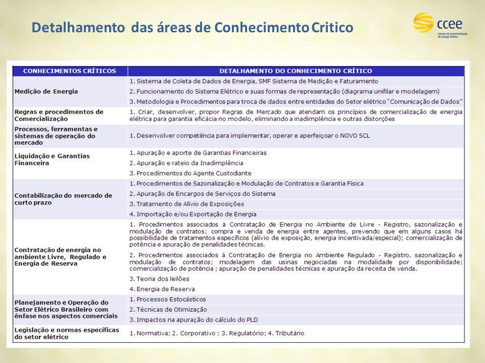 Detalhamento das áreas de Conhecimento Critico