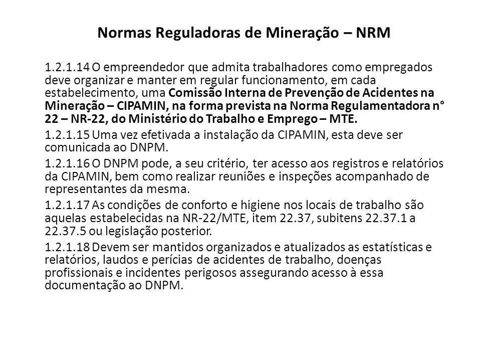 Normas Reguladoras de Mineração – NRM 1.2.1.19 Em caso de acidentes relevantes ou que acarretem impactos ao meio ambiente ou riscos que interfiram no processo produtivo ou ao trabalhador, é obrigatório: a) comunicação imediata ao DNPM; b) apresentação da descrição do acidente, suas causas e as medidas mitigadoras e c) a critério do DNPM apresentar relatórios periódicos que contemplem o monitoramento da situação de risco constatada.