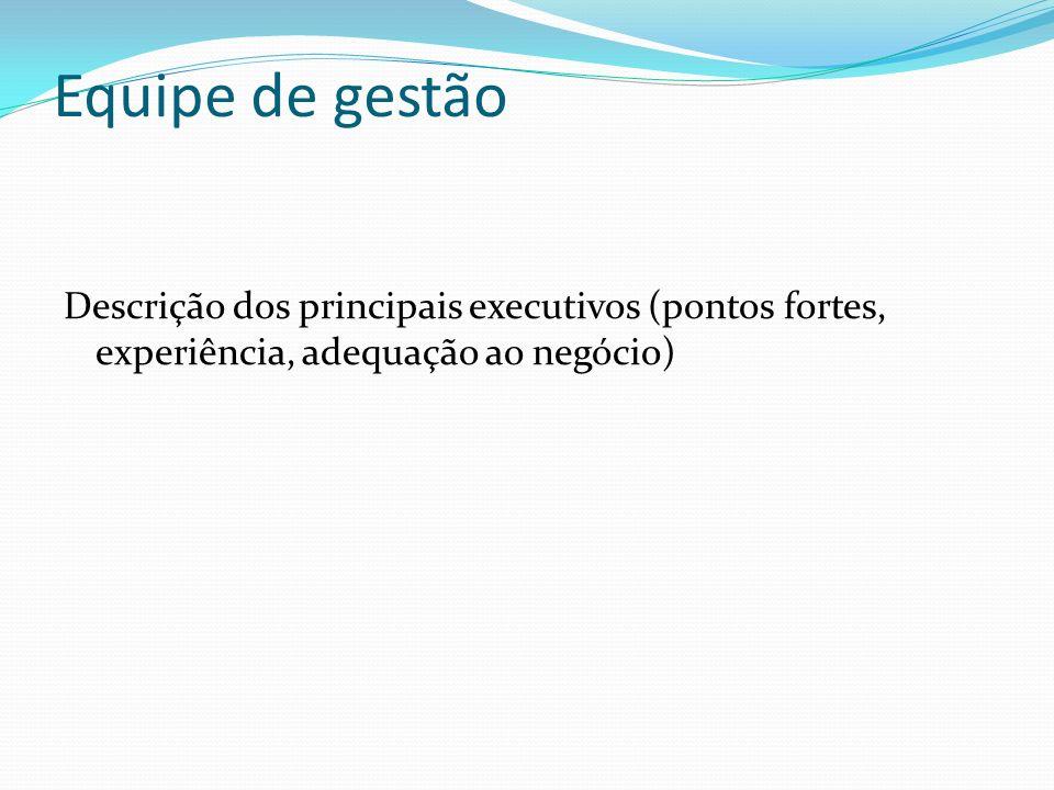 Equipe de gestão Descrição dos principais executivos (pontos fortes, experiência, adequação ao negócio)