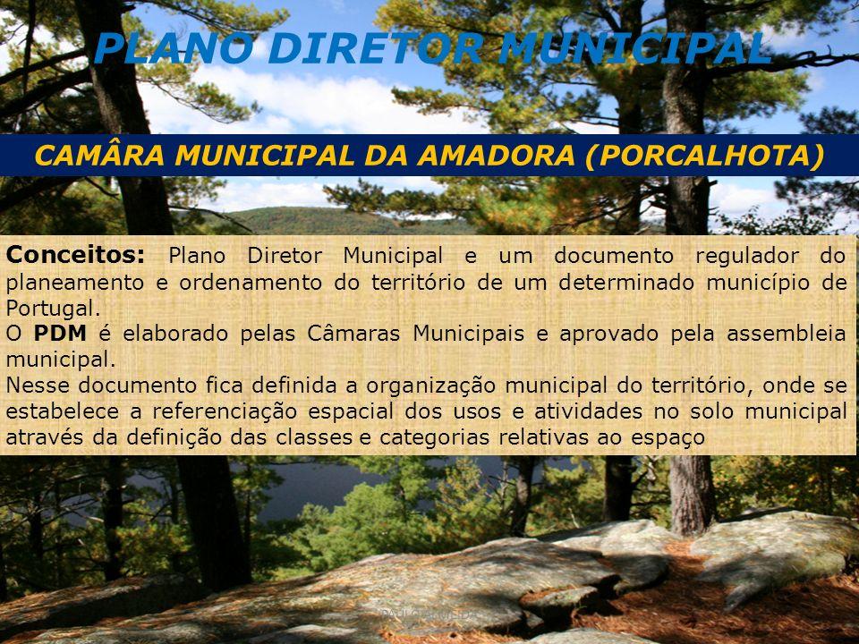 PLANO DIRETOR MUNICIPAL CAMÂRA MUNICIPAL DA AMADORA (PORCALHOTA) Conceitos: Plano Diretor Municipal e um documento regulador do planeamento e ordenamento do território de um determinado município de Portugal.