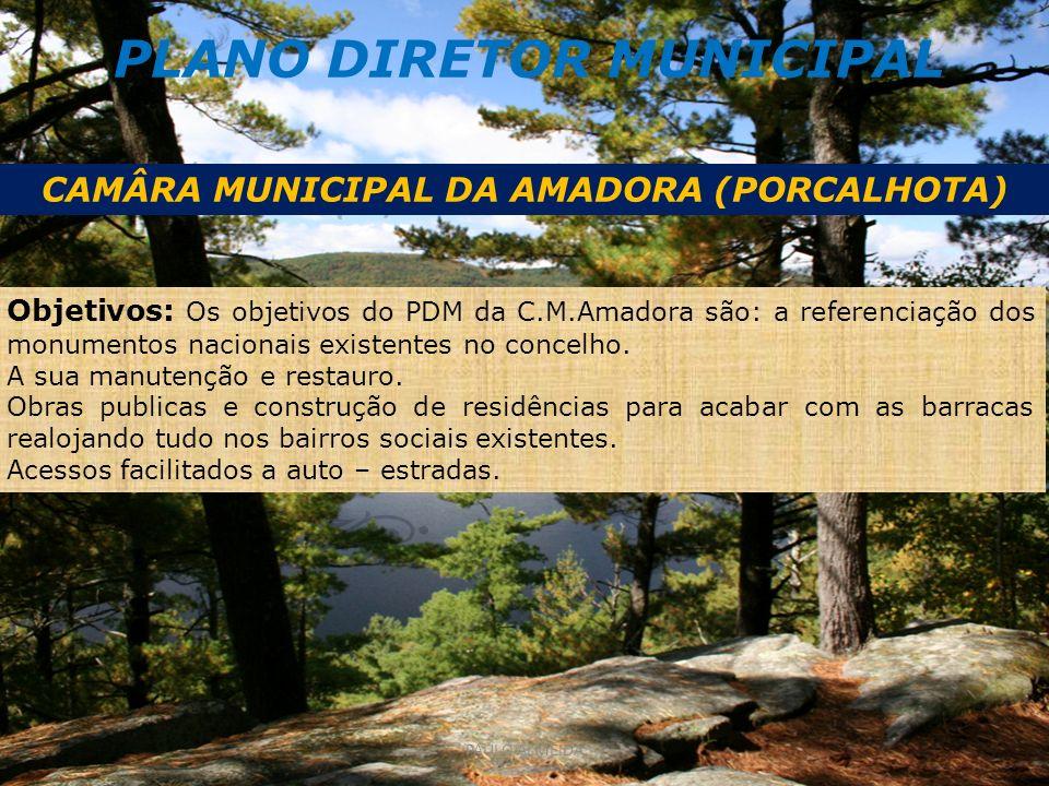 PLANO DIRETOR MUNICIPAL CAMÂRA MUNICIPAL DA AMADORA (PORCALHOTA) Objetivos: Os objetivos do PDM da C.M.Amadora são: a referenciação dos monumentos nacionais existentes no concelho.