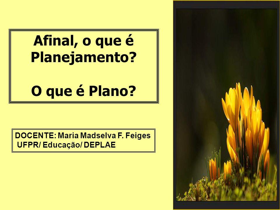 Afinal, o que é Planejamento.O que é Plano. DOCENTE: Maria Madselva F.