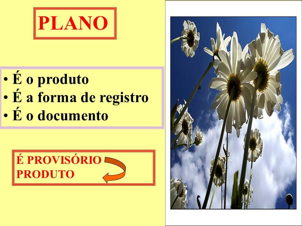 PLANO É o produto É a forma de registro É o documento É PROVISÓRIO PRODUTO