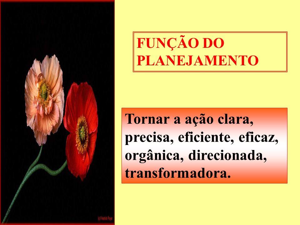 FUNÇÃO DO PLANEJAMENTO Tornar a ação clara, precisa, eficiente, eficaz, orgânica, direcionada, transformadora.