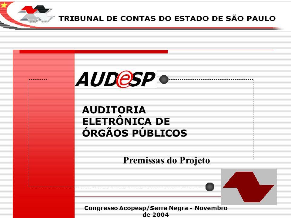 1 AUDITORIA ELETRÔNICA DE ÓRGÃOS PÚBLICOS X Congresso Acopesp/Serra Negra - Novembro de 2004 Premissas do Projeto
