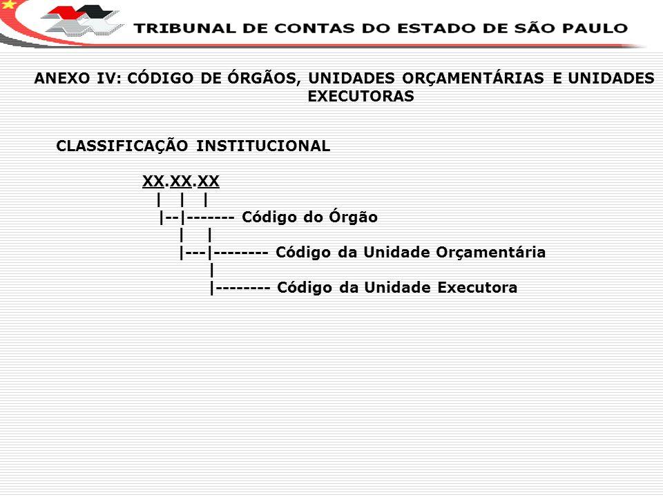 X CLASSIFICAÇÃO INSTITUCIONAL XX.XX.XX | | | |--|------- Código do Órgão | | |---|-------- Código da Unidade Orçamentária | |-------- Código da Unidad