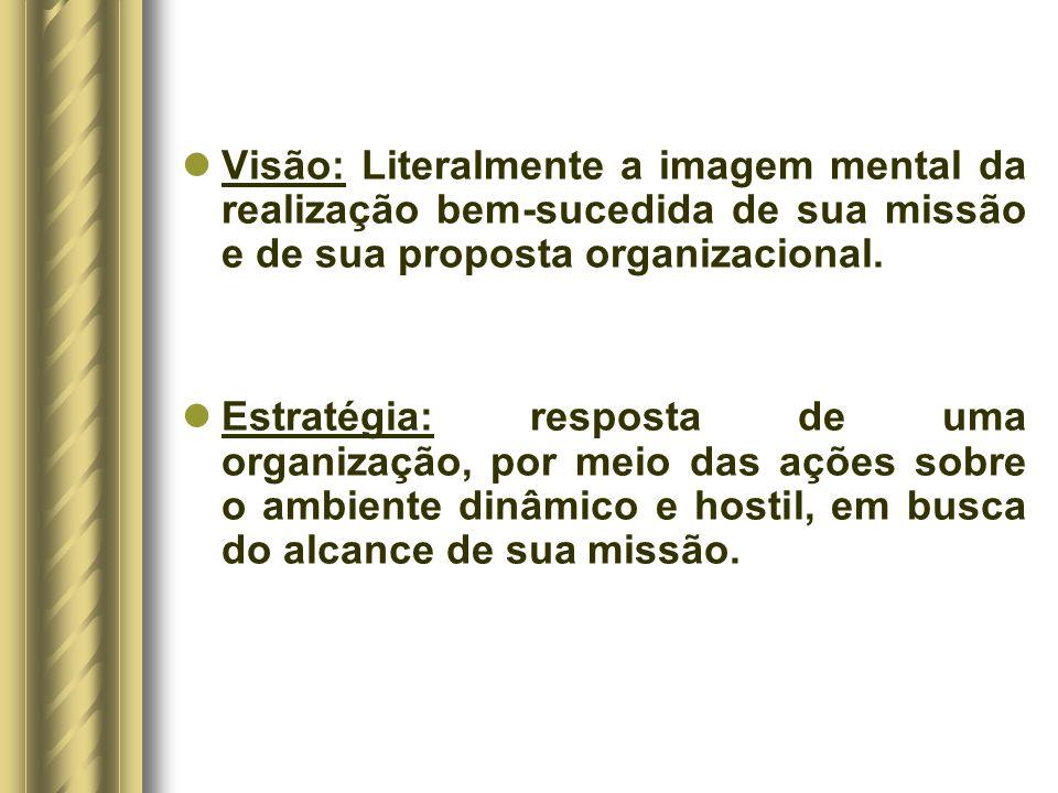 Visão: Literalmente a imagem mental da realização bem-sucedida de sua missão e de sua proposta organizacional.