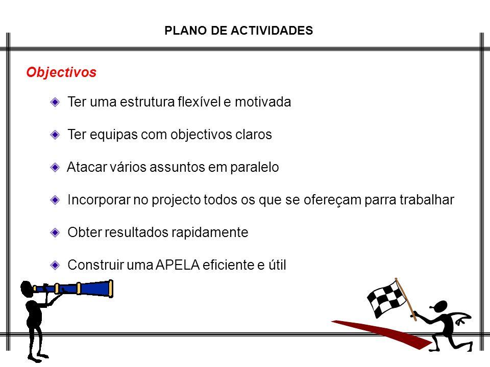 PLANO DE ACTIVIDADES Objectivos Ter uma estrutura flexível e motivada Ter equipas com objectivos claros Atacar vários assuntos em paralelo Incorporar