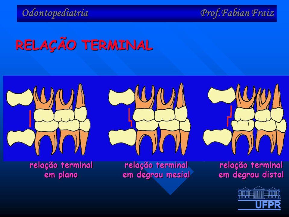 Odontopediatria Prof.Fabian Fraiz RELAÇÃO TERMINAL relação terminal em plano relação terminal em degrau mesial relação terminal em degrau distal