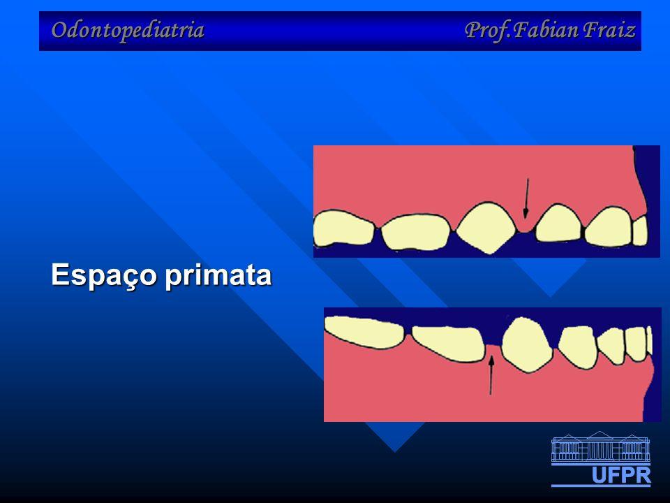 Odontopediatria Prof.Fabian Fraiz Espaço primata