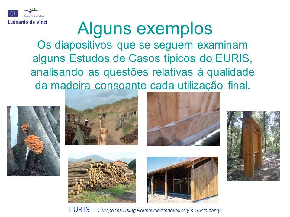 Alguns exemplos EURIS – Europeans Using Roundwood Innovatively & Sustainably Os diapositivos que se seguem examinam alguns Estudos de Casos típicos do