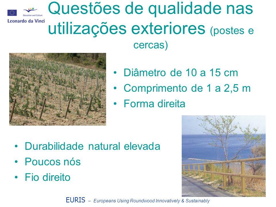 Questões de qualidade nas utilizações exteriores (postes e cercas) Diâmetro de 10 a 15 cm Comprimento de 1 a 2,5 m Forma direita Durabilidade natural elevada Poucos nós Fio direito EURIS – Europeans Using Roundwood Innovatively & Sustainably