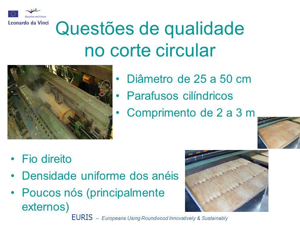 Questões de qualidade no corte circular Diâmetro de 25 a 50 cm Parafusos cilíndricos Comprimento de 2 a 3 m Fio direito Densidade uniforme dos anéis P