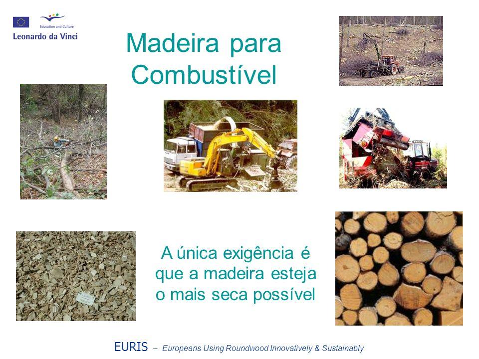 Madeira para Combustível EURIS – Europeans Using Roundwood Innovatively & Sustainably A única exigência é que a madeira esteja o mais seca possível
