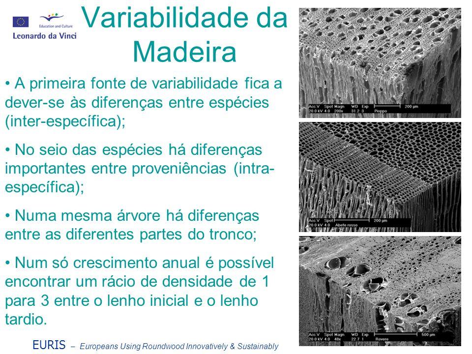 Variabilidade da Madeira A primeira fonte de variabilidade fica a dever-se às diferenças entre espécies (inter-específica); No seio das espécies há di