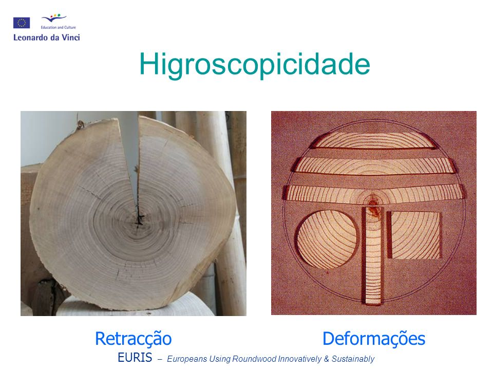 Higroscopicidade RetracçãoDeformações EURIS – Europeans Using Roundwood Innovatively & Sustainably