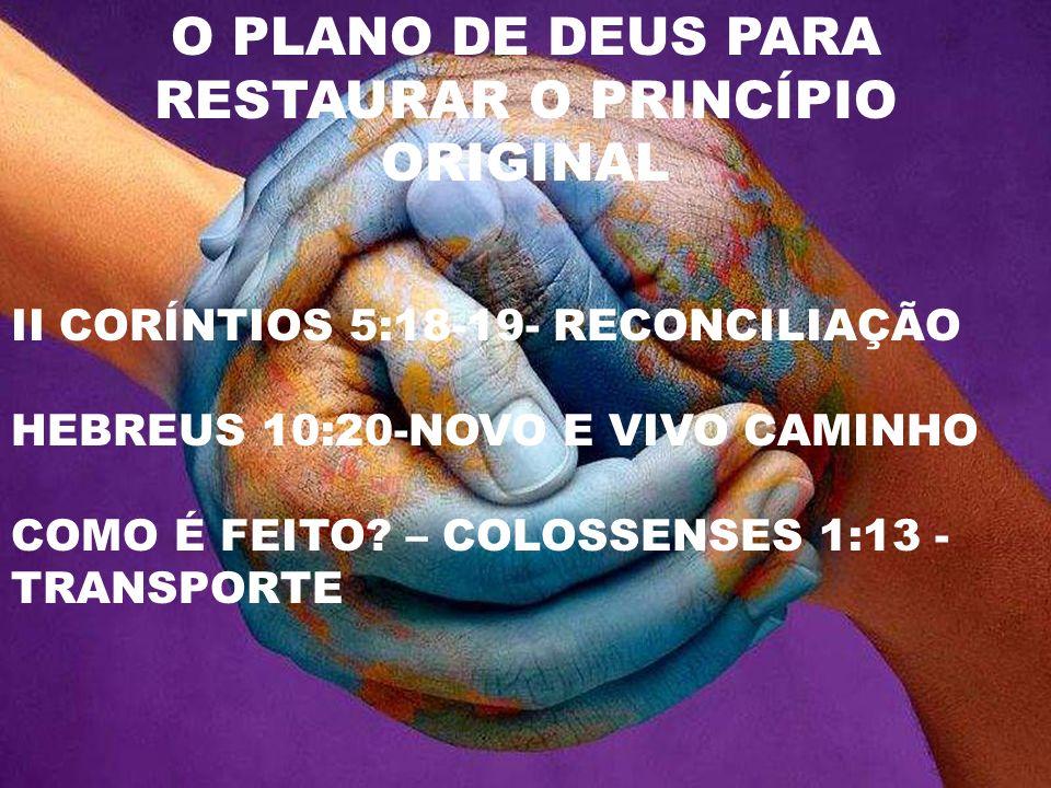 A INDIVIDUALIDADE E O ORGANISMO VIVO EFÉSIOS 4: 8- 14 EFÉSIOS 2:20 CRISTO – A PEDRA ANGULAR - APÓSTOLOS E PROFETAS - FUNDAMENTO A IGREJA