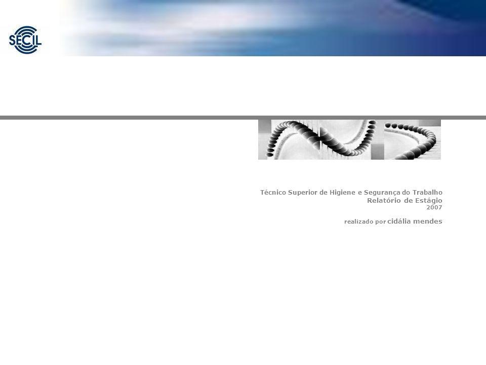 Técnico Superior de Higiene e Segurança do Trabalho Relatório de Estágio 2007 realizado por cidália mendes