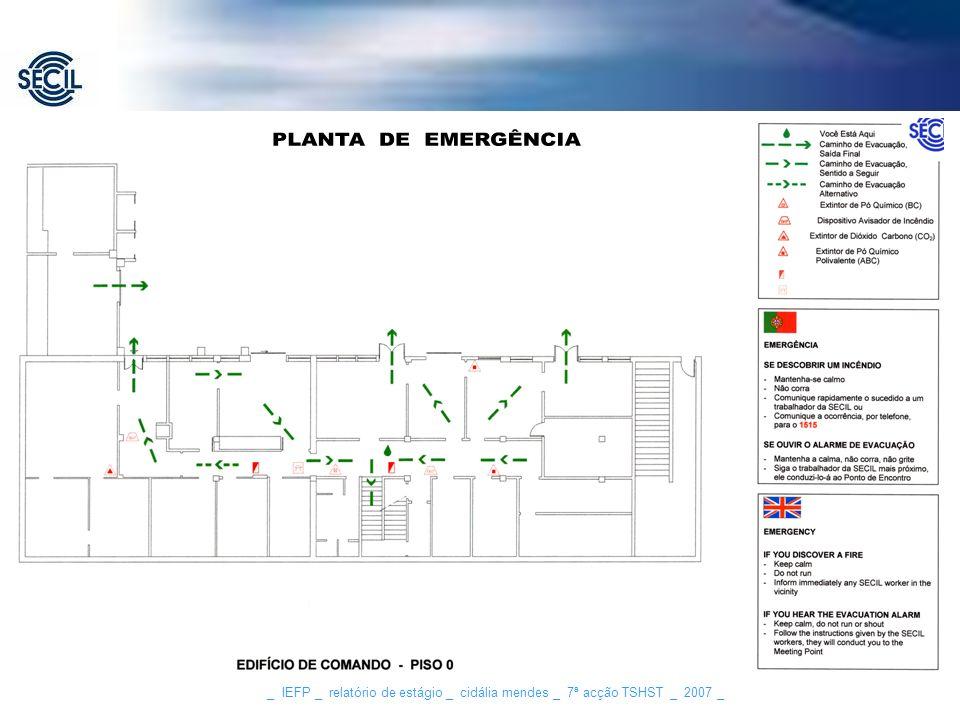 _ IEFP _ relatório de estágio _ cidália mendes _ 7ª acção TSHST _ 2007 _