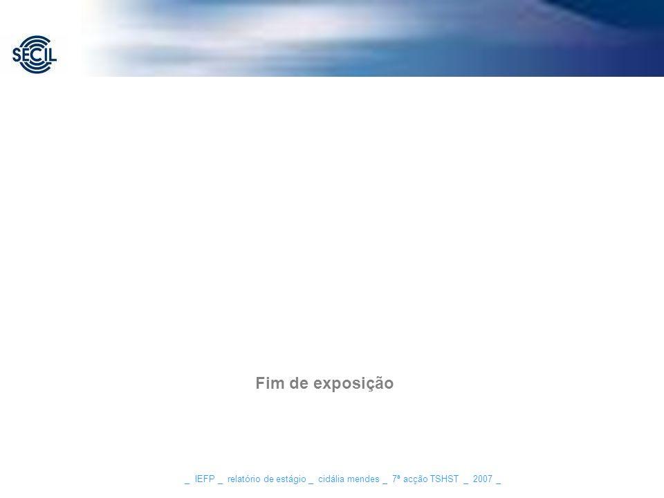 _ IEFP _ relatório de estágio _ cidália mendes _ 7ª acção TSHST _ 2007 _ Fim de exposição