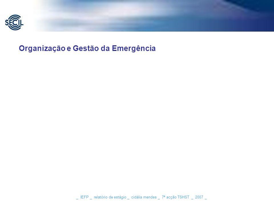 _ IEFP _ relatório de estágio _ cidália mendes _ 7ª acção TSHST _ 2007 _ Organização e Gestão da Emergência