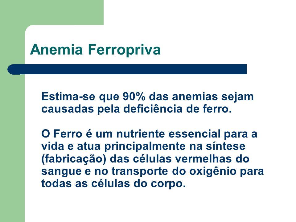 Anemia Ferropriva Estima-se que 90% das anemias sejam causadas pela deficiência de ferro.