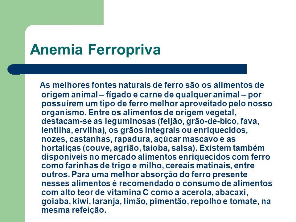 Anemia Ferropriva As melhores fontes naturais de ferro são os alimentos de origem animal – fígado e carne de qualquer animal – por possuírem um tipo de ferro melhor aproveitado pelo nosso organismo.